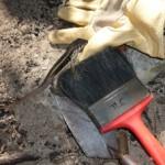 Fort St George lizard tools